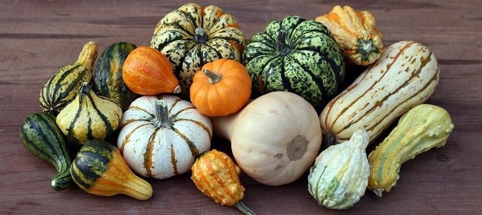 Beyond Jack O'Lanterns: Savory Pumpkin Cooking