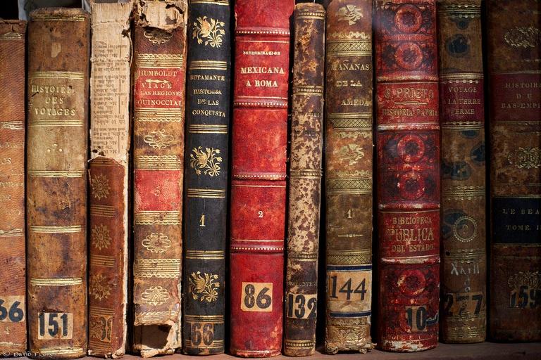 Best of World Literature
