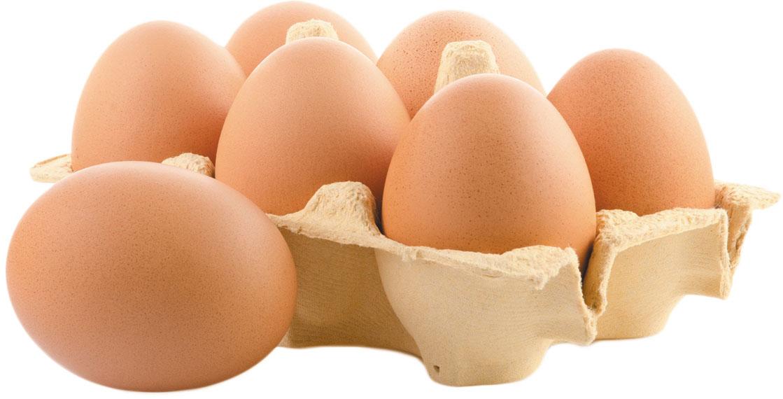 Exceptional Essentials: Eggs 2