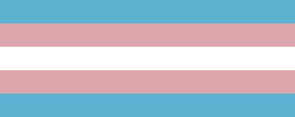 After Dark Online: Transgender Day of Visibility