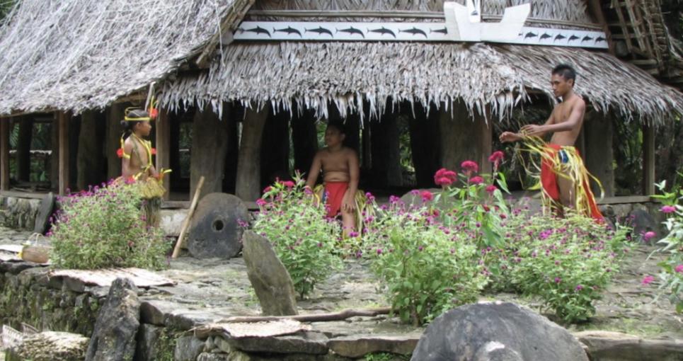 Making Waves: Anatomy of Micronesia's Successful Regional Collaboration