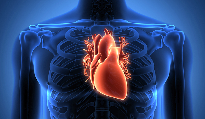 The Ethics of Heart Transplantation