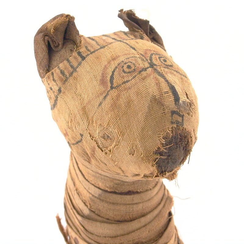Virtual Saturday Sampler Tour: Animals in the Ancient World