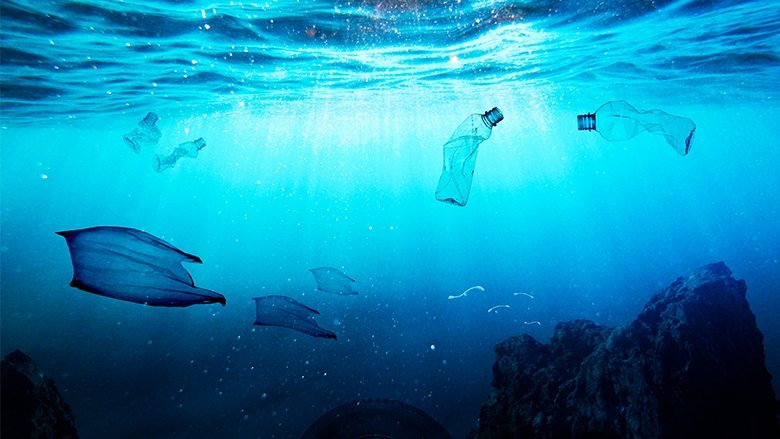 Turning the Tide on Marine Plastics in South Asia