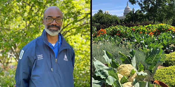 Seasonal Vegetable Gardening