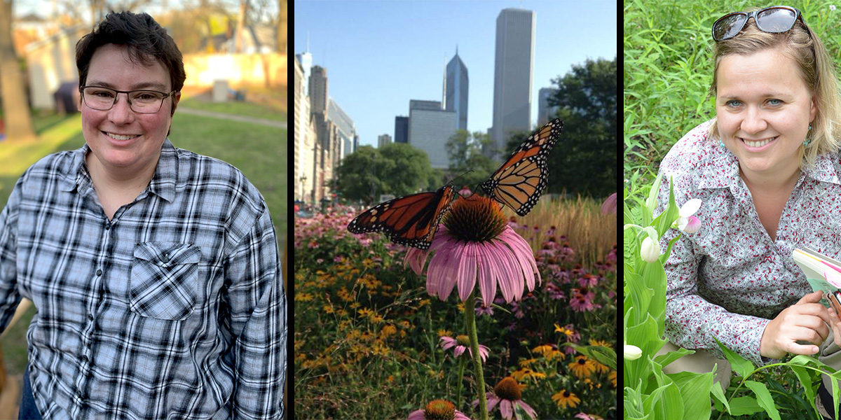Monarch Conservation in Cities