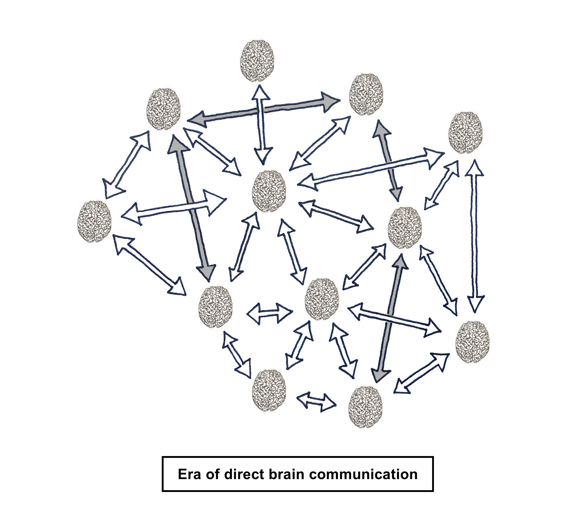 Multiple brains that are directly connected with each other via a brain machine interface