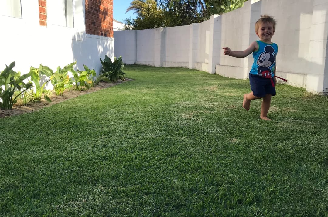 Arlo joyfully running up and down the lawn