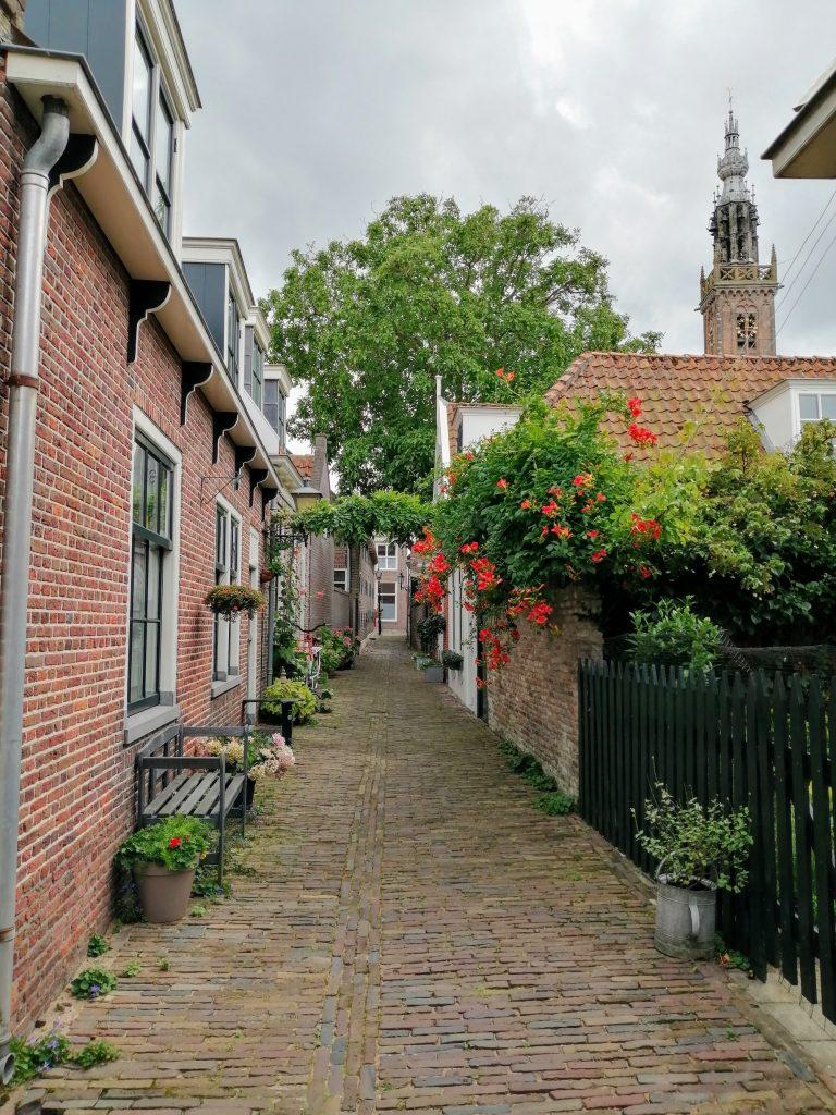 Edam, Holanda, The Brave New life