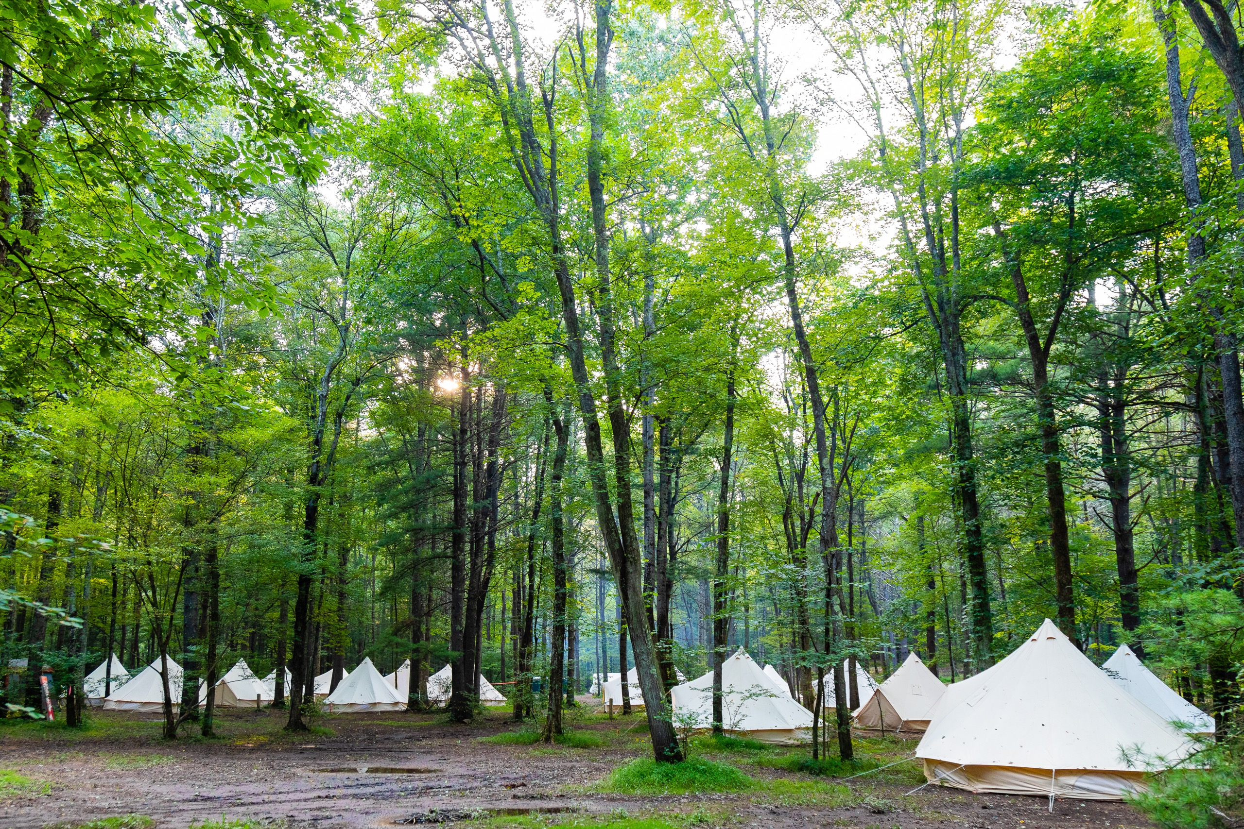Glamping Tents at Campout