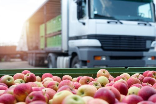 logistics fruits