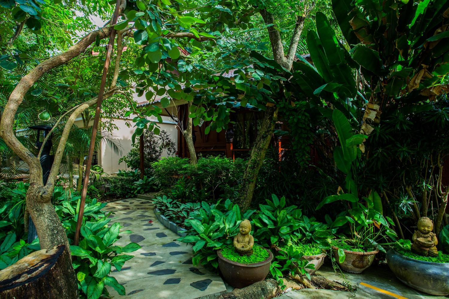 Natural entrance for private wooden bungalow