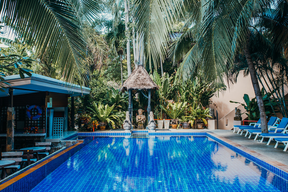 Swimming pool with pool cafe and nice palm tree