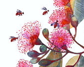 Pink Flowering Gum Art Print