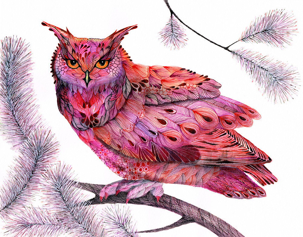 Pink Winter Owl Art Print