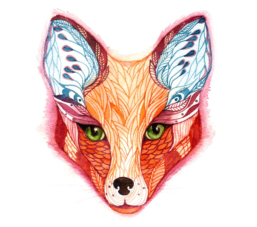 Red Fox Face Art Print