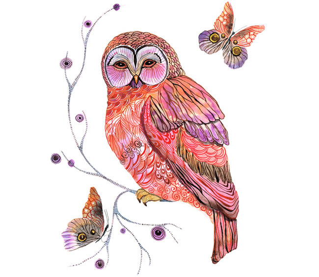 Owl And Butterfly Art Print