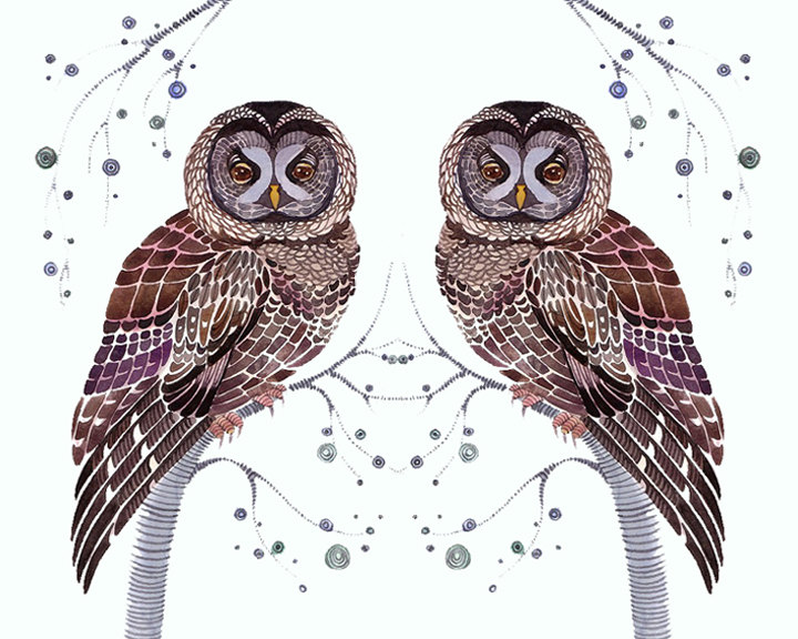 Lacy Owl Twins Art Print