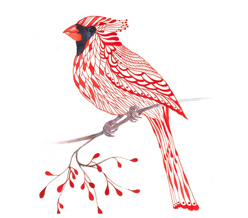 Lacy Cardinal On Branch Art Print