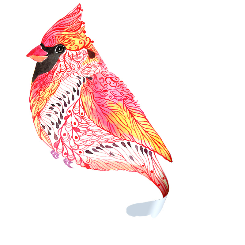 Jewel Cardinal Sticker