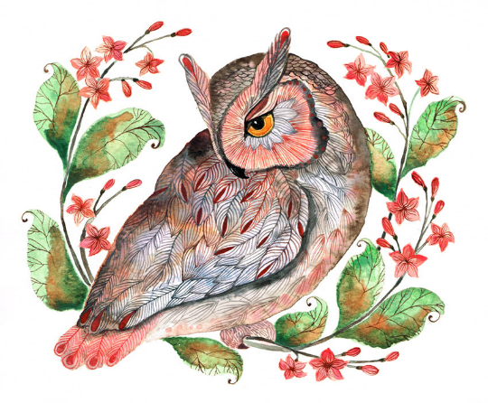 Daydreaming Owl Art Print