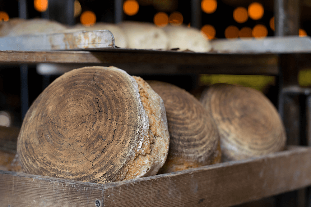 Sourdough Bread Benefits: How Healthy It Is?