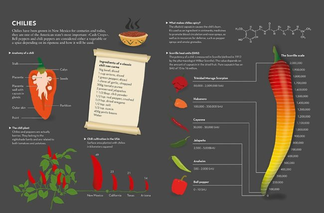 simone klabin food & drink infographics