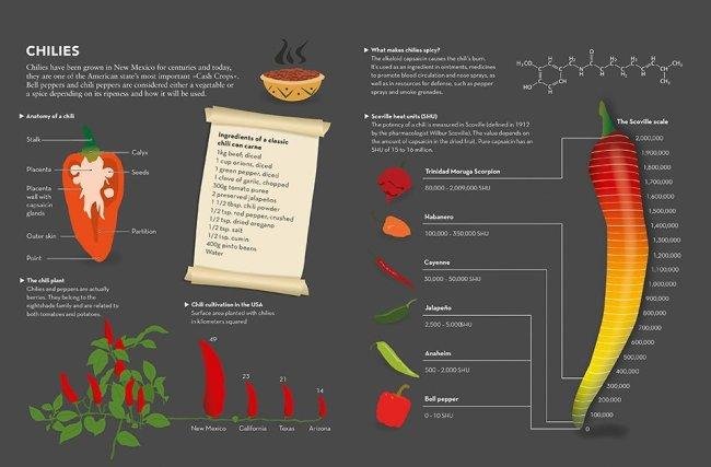simone klabin food & drink infographics