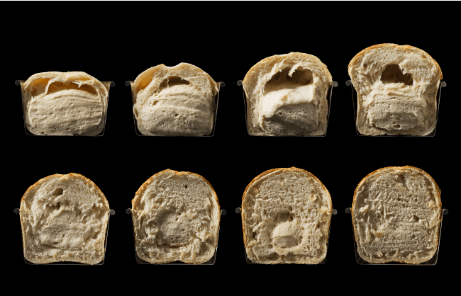 Modernist Bread Review