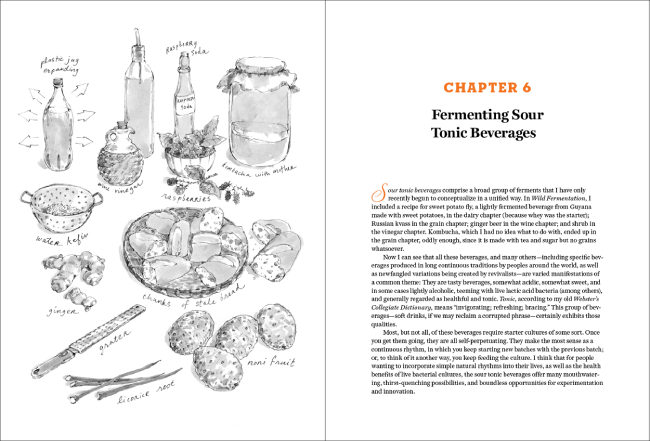 The Art of Fermentation Review