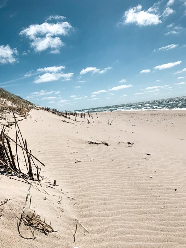 sylt beach image