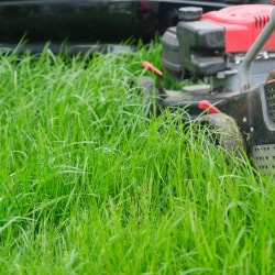 a lawnmower mowing grass