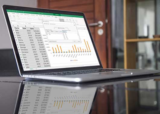 A laptop displaying spreadsheets