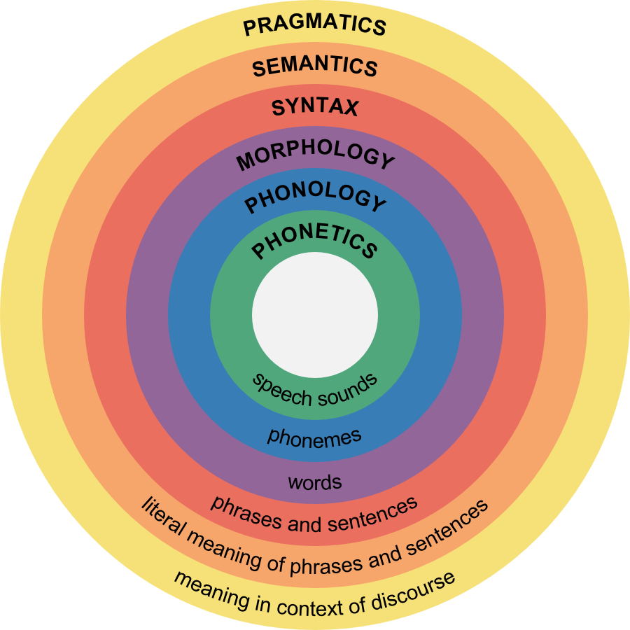 Linguistic levels of meaning. Phonetics. Phonology. Morphology. Syntax. Semantics. Pragmatics.