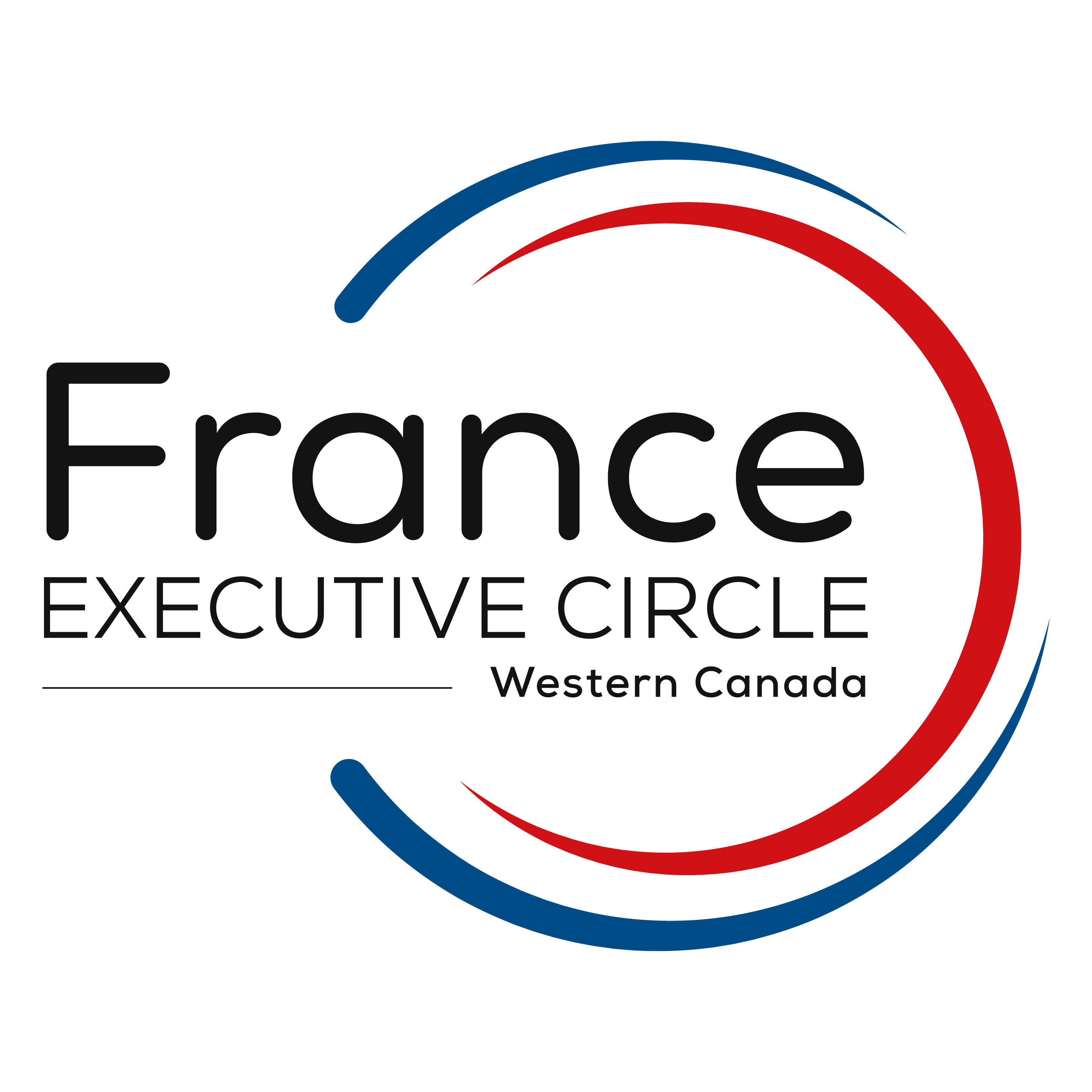 France Executive Circle Logo | Colors