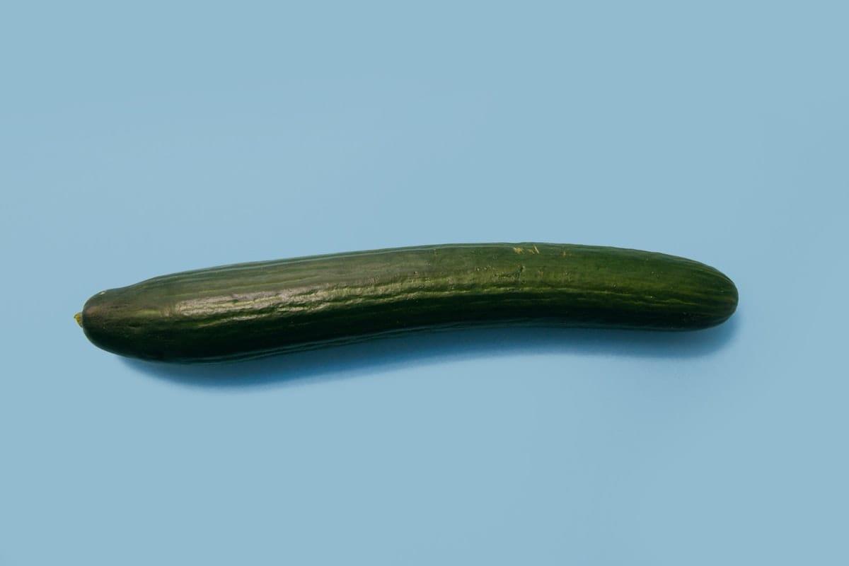 Penis-shaped cucumber