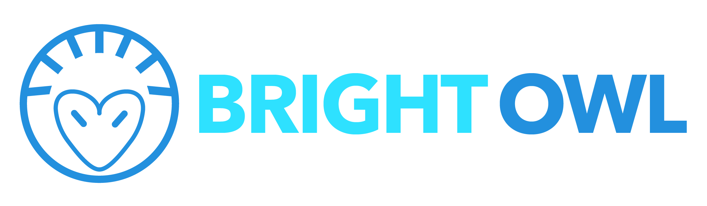 Bright Owl Digital