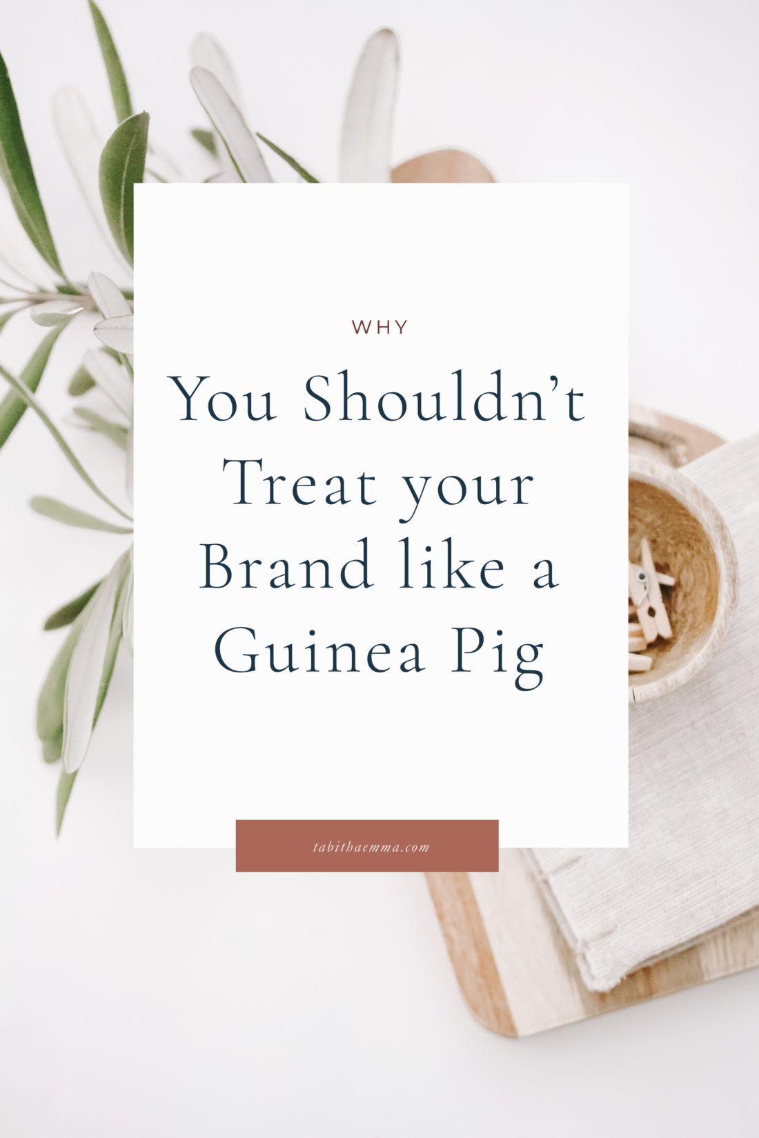 don't treat your brand like a guinea pig