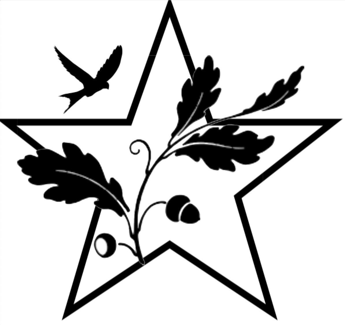 Star Ark Enterprises