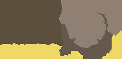 drop bear bytes logo type