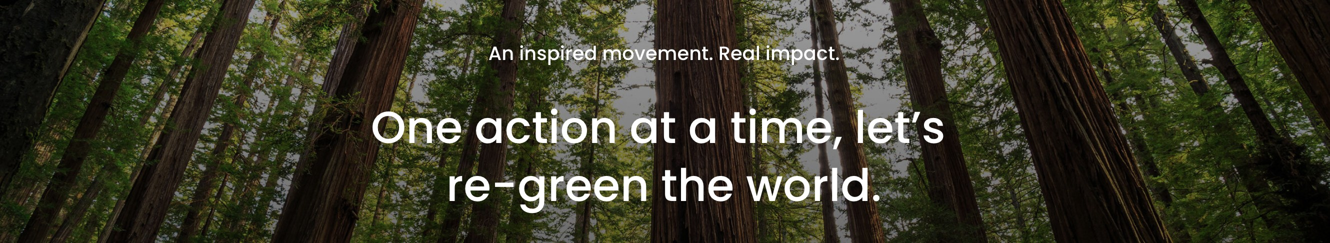 one action at a time, let's re-green the world.