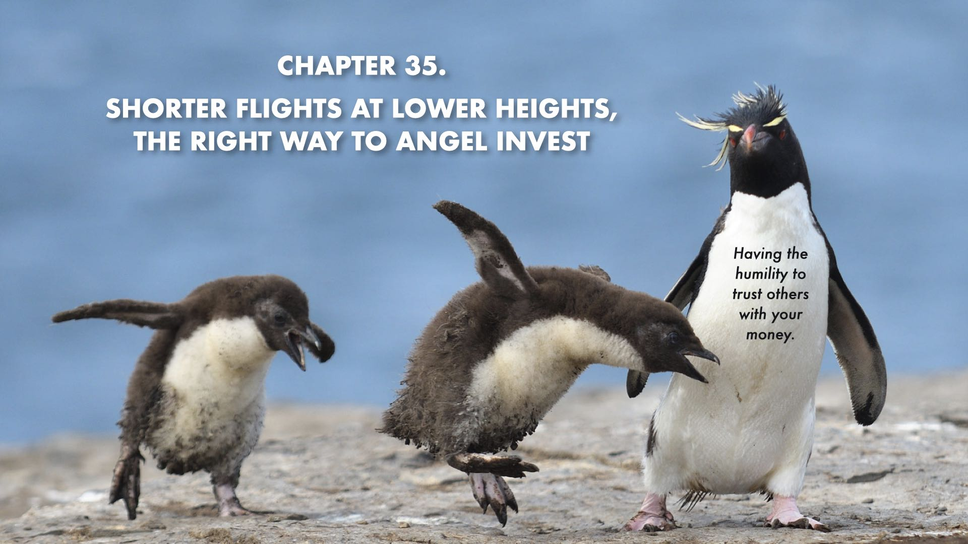 Shorter Flights At Lower Heights: The Right Way to Angel Invest