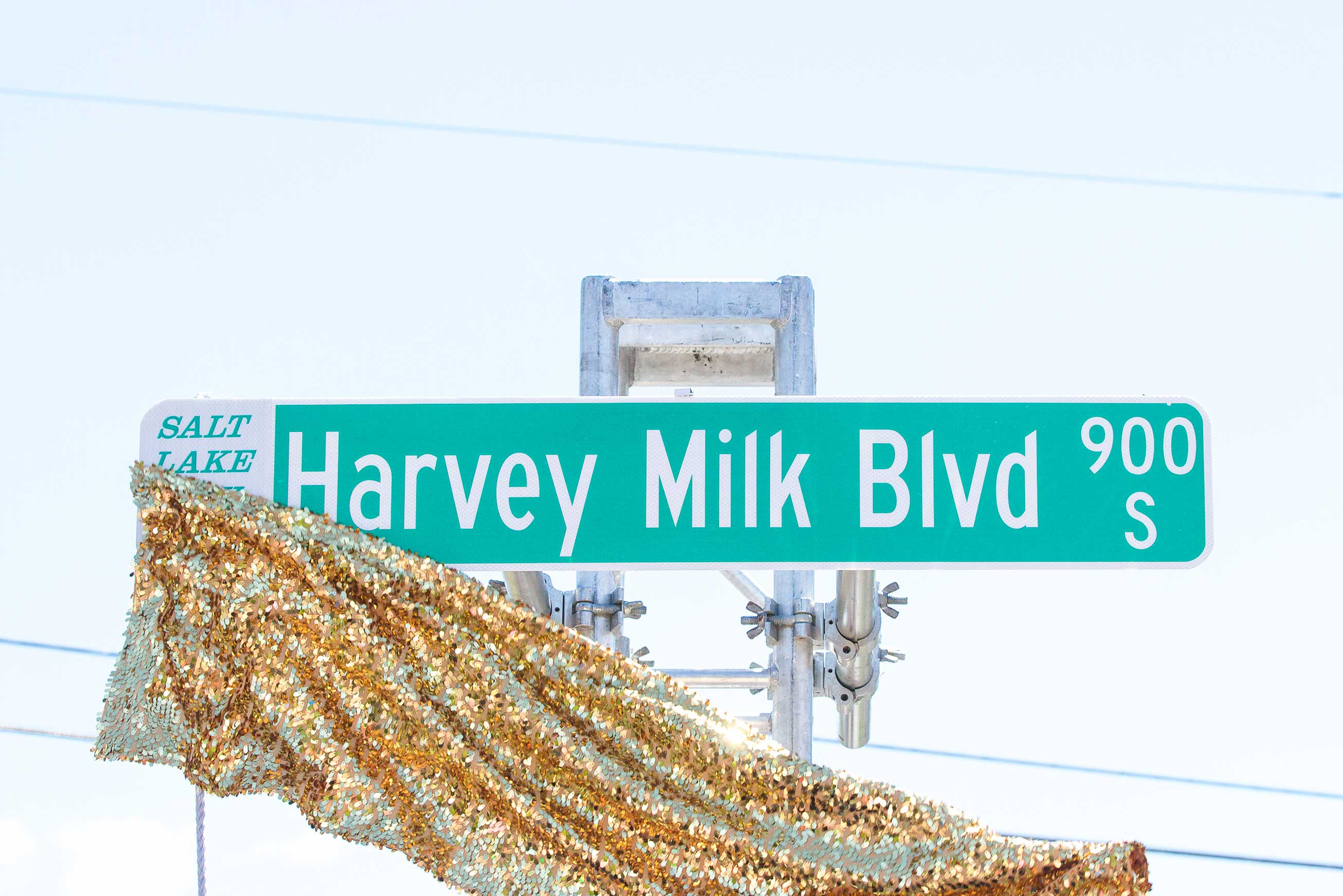 Unveiling of the Harvey Milk Blvd street signs in 2016