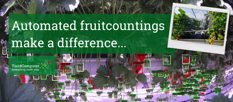 Webinar: Role of Automated Fruit Counting for Reliable Yield Forecasting