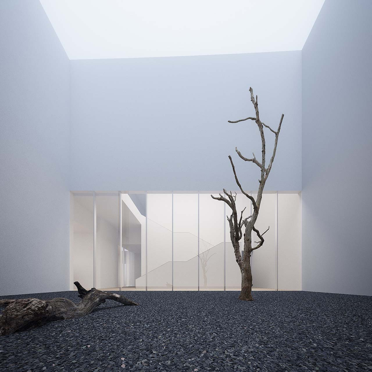 Photoreal 3d render: minimalist museum courtyard surrounded by white concrete walls, fossil tree on black gravel