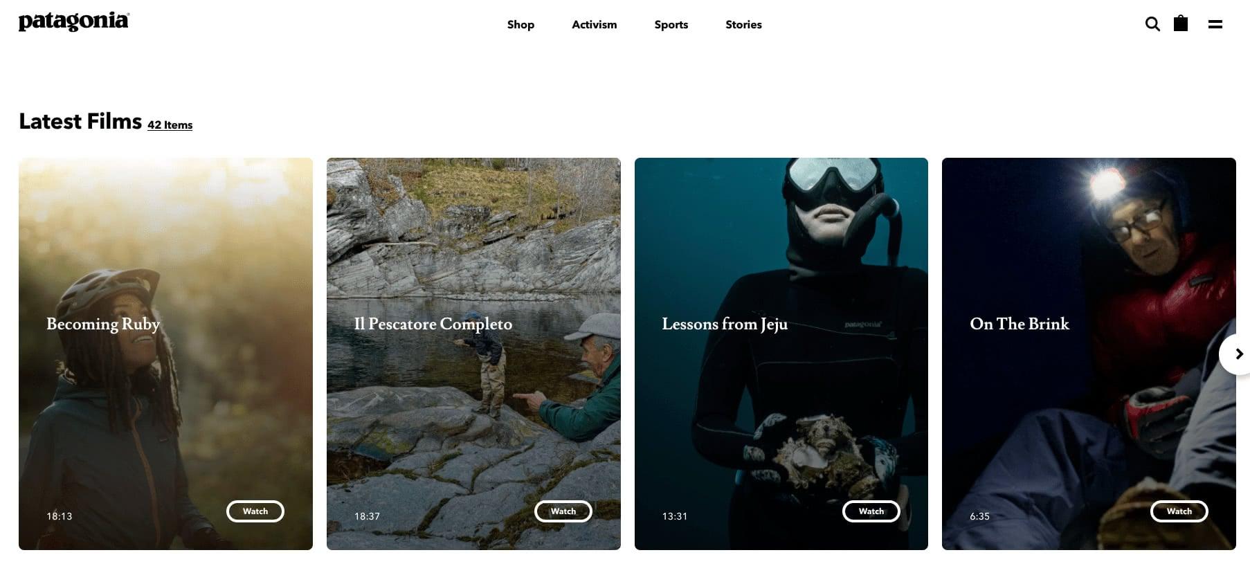 Patagonia stories website