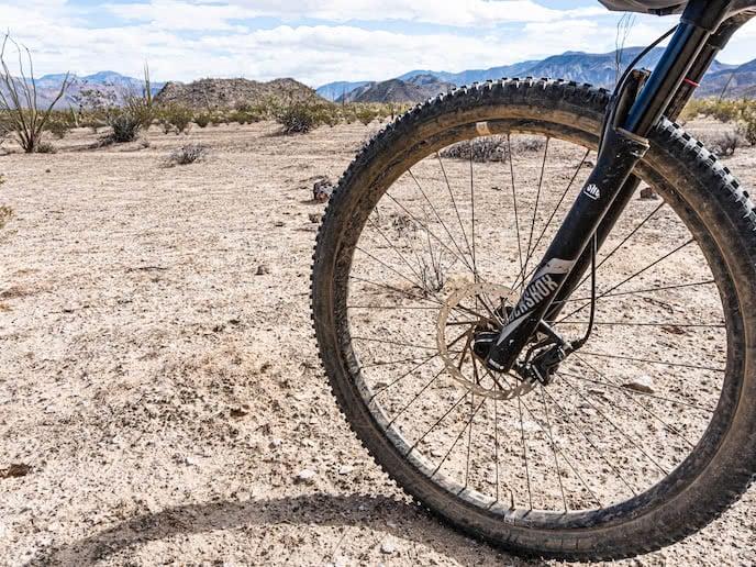 Nobby Nick 29er mountain bike tires