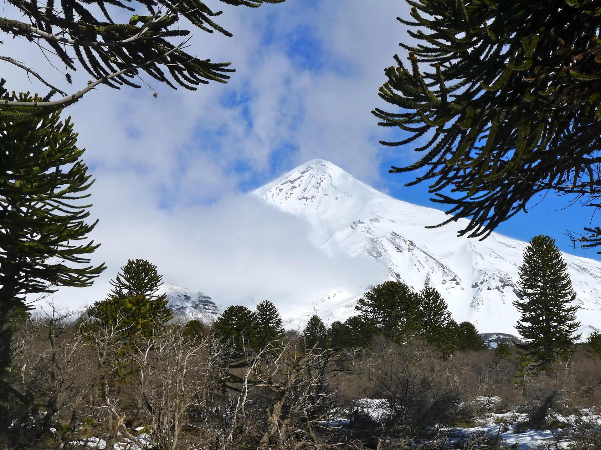 Volcano Argentina