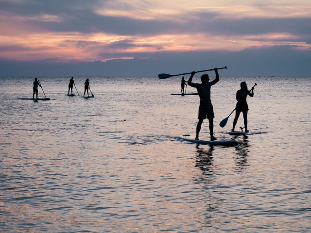 Group of SUP paddlers paddling at sunset