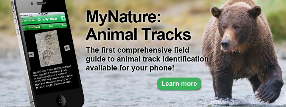 MyNature Animal Tracks best camping apps for tracking